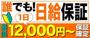 保証12,000円